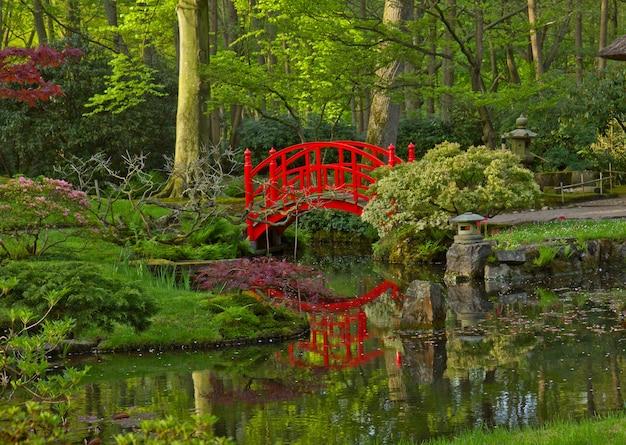 Japanese garden with red bridge, den haag, holland