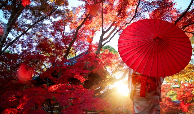 Japanese girl in kimono traditional dress travel in red autumn park in kyoto city, japan