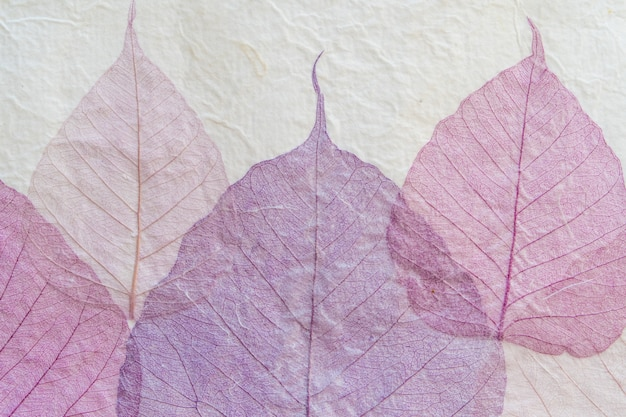 Japanese handmade paper with violet leaves pattern