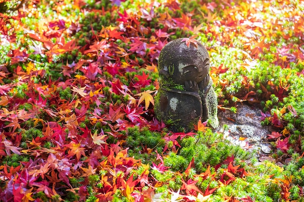 Japanese jizo sculpture doll with falling red maple leaf in japanese garden at enkoji temple, kyoto, japan. landmark and famous in autumn season