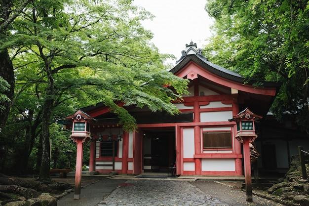 교토 빈티지 영화 스타일에서 일본 단풍 나무 잎 일본 사원