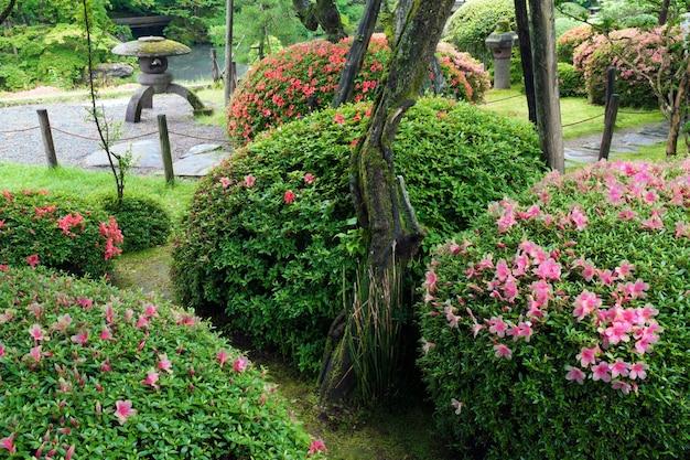 夏までにツツジの茂みが咲く枯山水