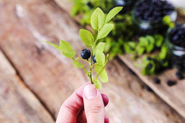 Jar of blueberries