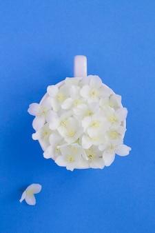 Цветы жасмина в белой чашке на синем фоне
