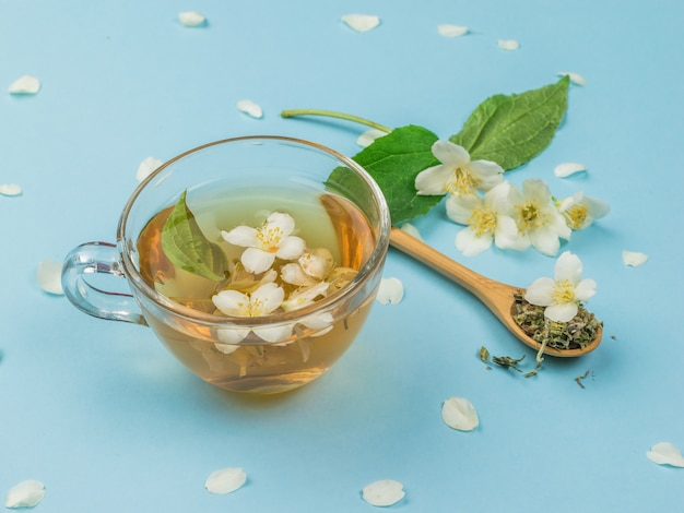 Jasmine flowers and jasmine tea on a blue surface. an invigorating drink that is good for your health.