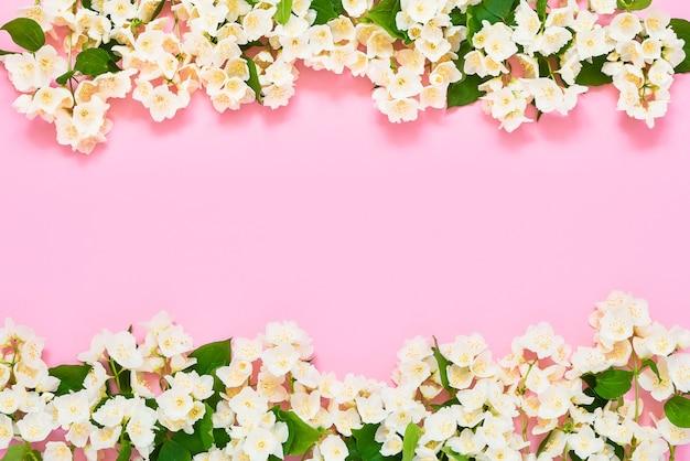 ジャスミン、フィラデルフスまたはモックオレンジの花はピンクの背景に接しています