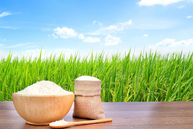 녹색 쌀 필드와 빈티지 나무 테이블에 나무 그릇과 자루 삼 베에 재 스민 쌀.