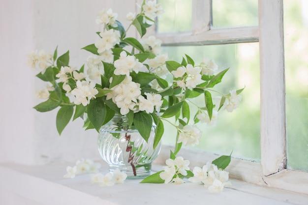 Jasmine in vase on windowsill