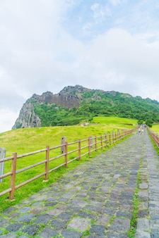 Jeju, korea - july 9, 2017:the tourist visited seongaksan mountain, the famous scenic views in jeju