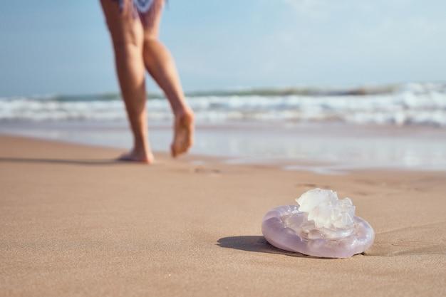 해변의 해안에 해파리입니다. 해파리 찌르기