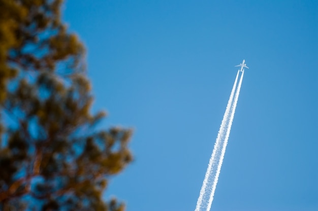 Jet plane flying in blue sky with blurry trees out of focus