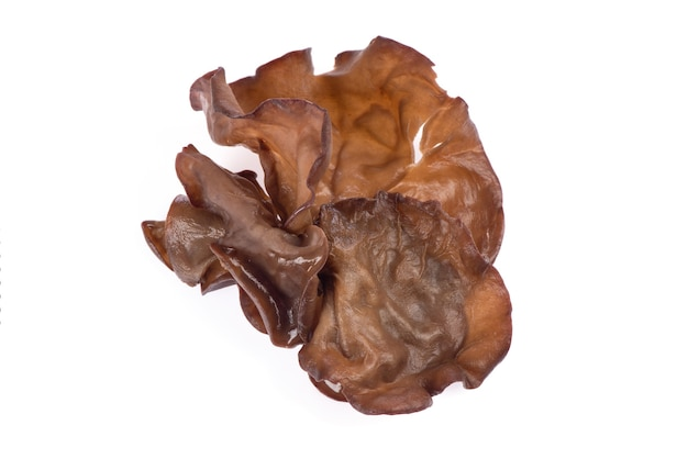 Jew's ear or auricularia auricula judae isolated on white background. top view,flat lay