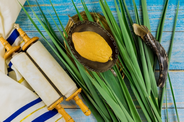 Jewish festival traditional symbols of sukkot with four species etrog lulav hadas arava