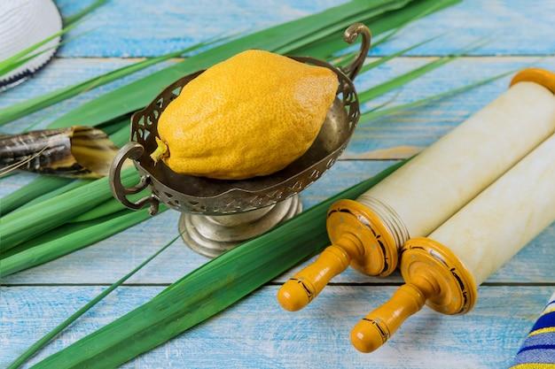 Еврейский праздник символов фестиваль суккот с этрогом лулавом хадасом аравой