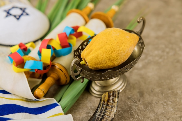 Еврейский праздник суккот традиционные символы праздника четыре вида этрог лулав хадас арава.