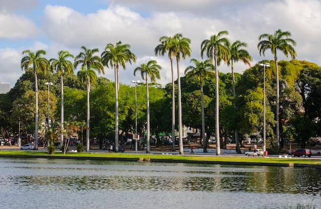 Joao pessoa paraiba brazil view of the lagoon of parque solon de lucena