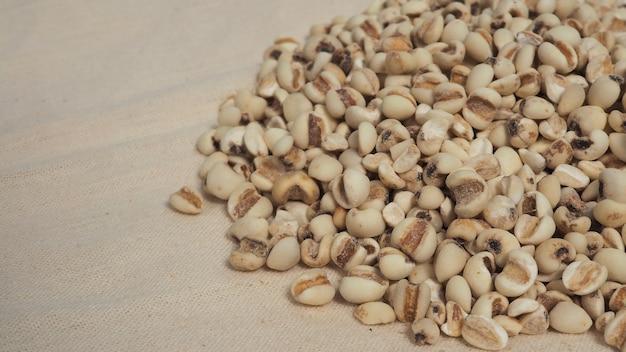 Слезы иова, также известные как адлей и коикс на ситцевом фоне. популярно в азиатских культурах как источник пищи.