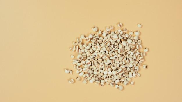Слезы иова, также известные как адлей и коикс на белом фоне. популярно в азиатских культурах как источник пищи.