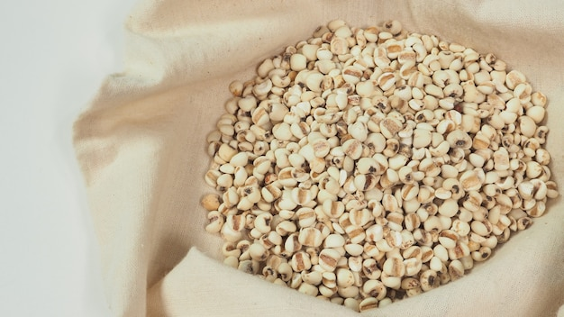 Job's tears, also known as adlay and coix in calico and white background. popular in asian cultures as a food source.