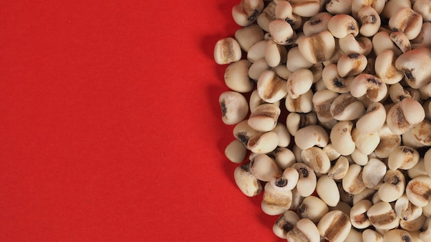 Job's tears, also known as adlay and coix on red background. popular in asian cultures as a food source.