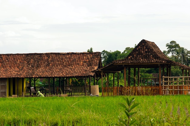 A joglo house is a traditional house from central java, indonesia