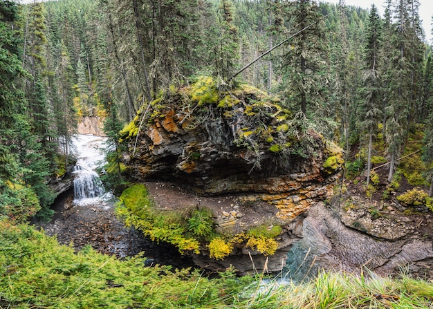Johnston canyon in bow valley with stream flowing at banff national park