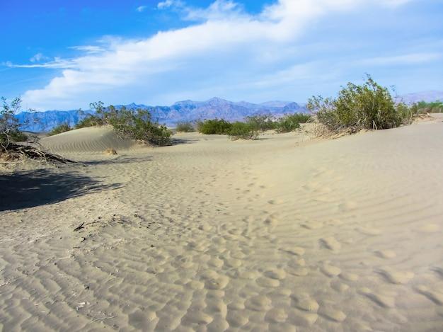 カリフォルニア州モハーベ砂漠のジョシュアツリー国立公園