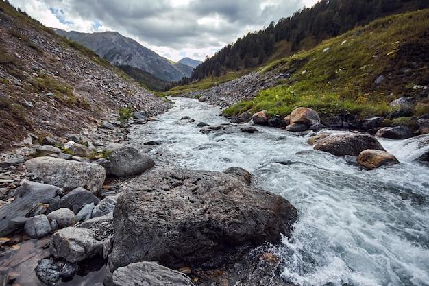 산 계곡을 걸어서 여행하십시오. 야생 동물의 아름다움. 알타이, shavlinsky 호수로가는 길. 인상