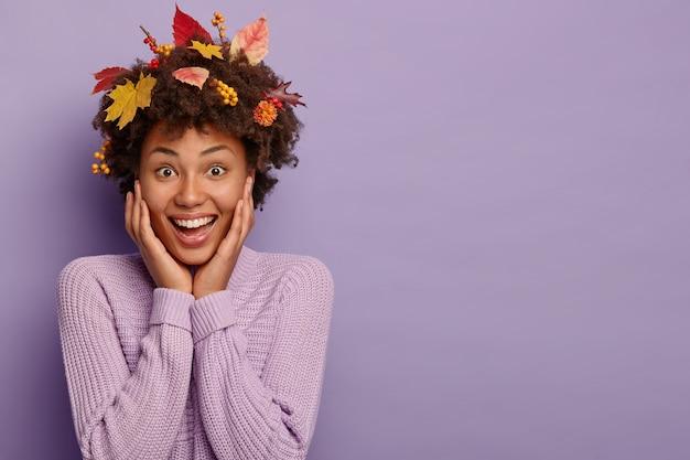 곱슬 머리를 가진 즐거운 아프리카 여성, 뺨을 만지고, 머리카락에 낙엽이 있고, 자주색 스웨터를 입고, 넓게 미소를 짓고, 보라색 벽 위에 포즈를 취하고, 여유 공간이 있습니다.
