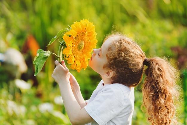 Joyful child smell sunflower enjoying nature in summer sunny day.