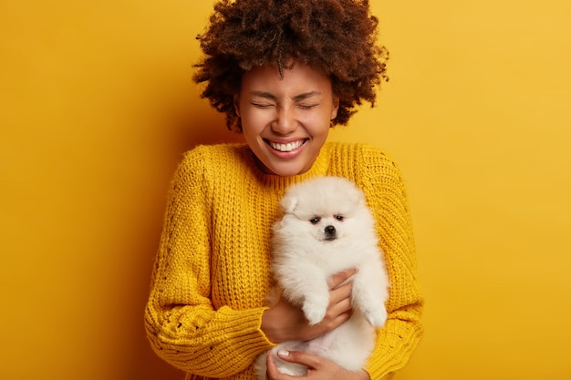 Joyful curly woman with white fluffy spitz carries dog to grooming salon, glad to get favorite breed pet as present from boyfriend