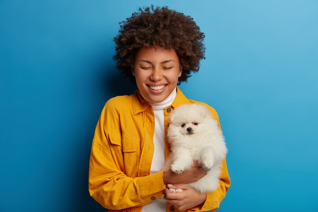 Joyful curly young woman holds white pedigree spitz dog on hands, keeps eyes closed, broad smile, dressed in fashionable clothes, isolated over blue background.