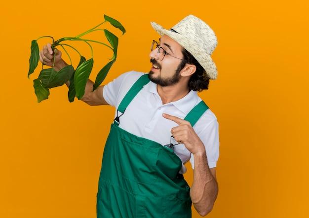 ガーデニング帽子をかぶった光学メガネのうれしそうな男性の庭師は、植物を保持し、見ています