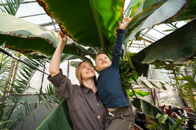 즐거운 엄마와 아들은 바나나 나무의 큰 잎을 봅니다.