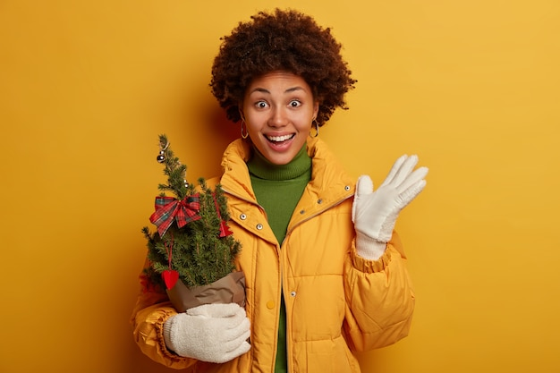 Joyful woman with afro haircut, dressed in down padded coat, white winter gloves, holds potted decorated small new year tree, prepares for holiday celebration