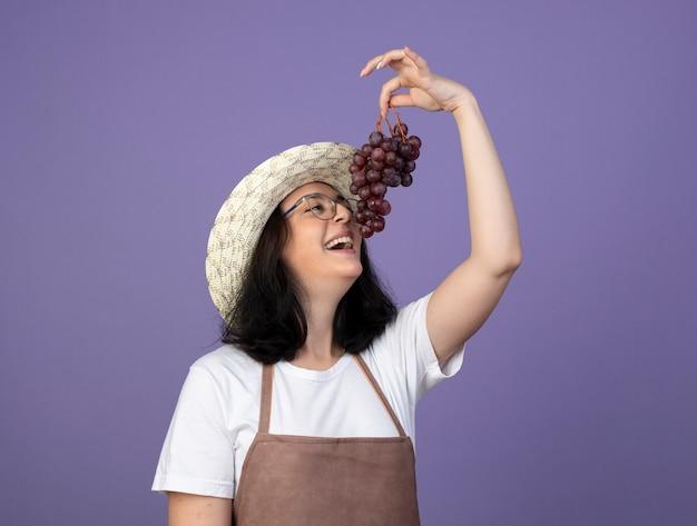 光学メガネと制服を着た庭師のうれしそうな若いブルネットの女性の庭師は、紫色の壁に隔離されたブドウを保持し、見ています