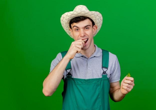 Радостный молодой мужчина-садовник в садовой шляпе делает вид, что кусает сломанный острый перец на зеленом фоне с копией пространства