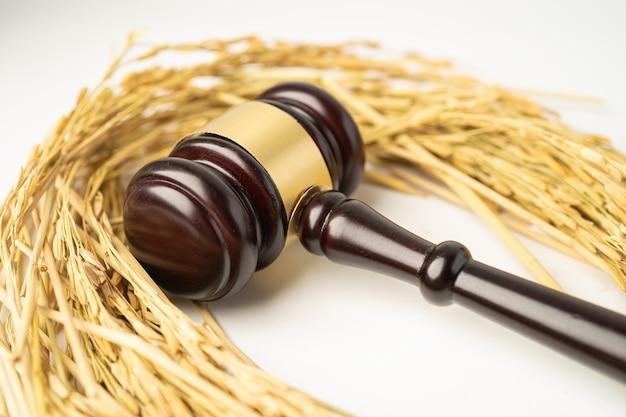 農業農場からの良質の穀物米でガベルハンマーを判断します。法と司法裁判所の概念。