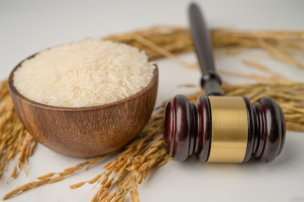 Judge gavel hammer with good grain rice from agriculture farm. law and justice court concept.