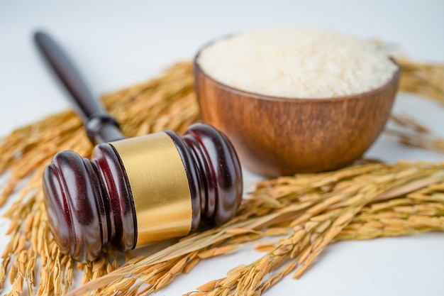 Judge gavel hammer with good grain rice from agriculture farm.