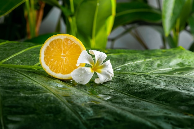 Juicy fresh lemon with plumeria flower on a green leaf. healthy lifestyle and spa