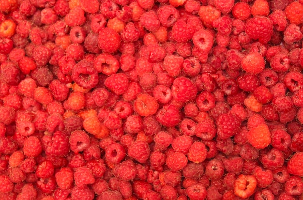 Juicy red ripe raspberry closeup as background