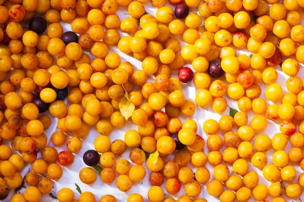 Сочные спелые желтые алычи крупным планом