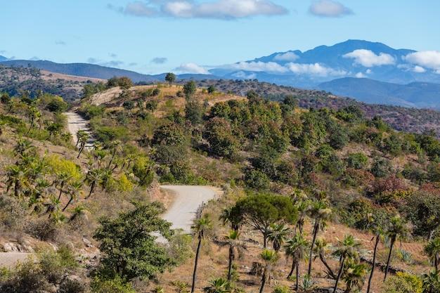 メキシコの梅雨のジャングルと山々