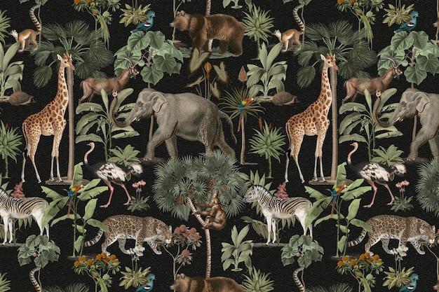 정글 패턴 배경 야생 동물 무료 사진