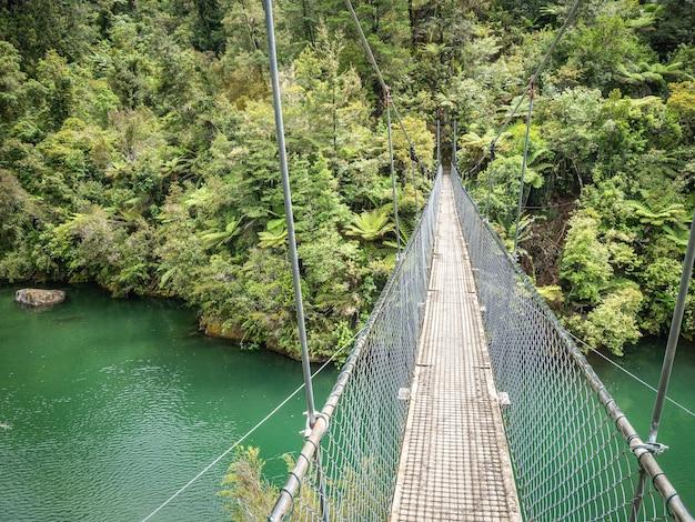 ニュージーランドのアベルタスマン国立公園で撮影された旋回橋のあるジャングルの風景