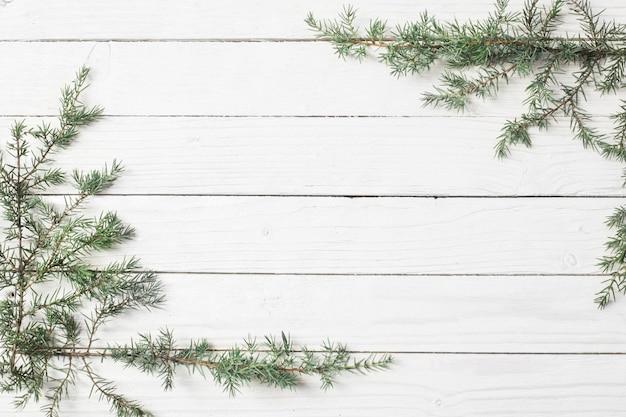 Ветви можжевельника на белой деревянной поверхности