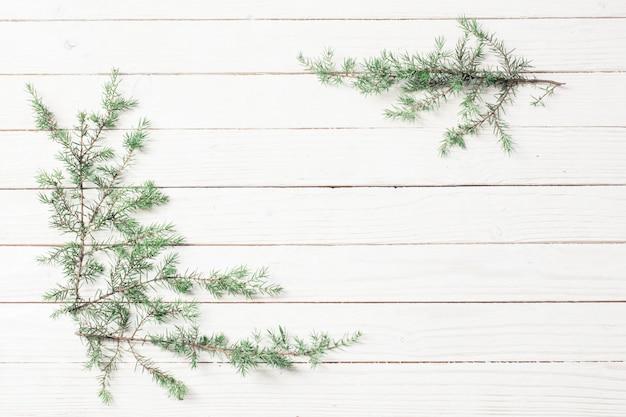 Ветви можжевельника на белом деревянном.