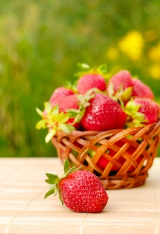 Just picked strawberries in a basket