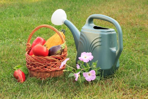 ズッキーニ、ナス、トマト、ピーマンを籐のかごで摘み、じょうろと緑の草の上に花を咲かせます。収穫したばかりの野菜。